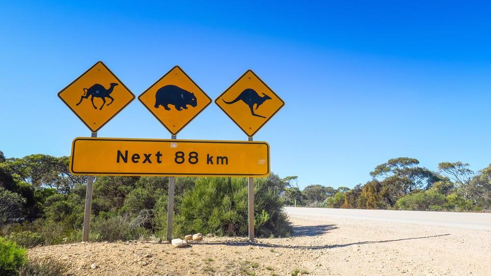 Les panneaux en Australie...